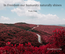 in-freedom-our-humanity-naturally-shines
