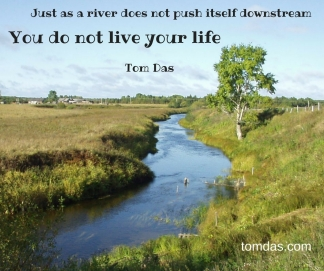pushing a river