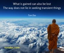 transient things2