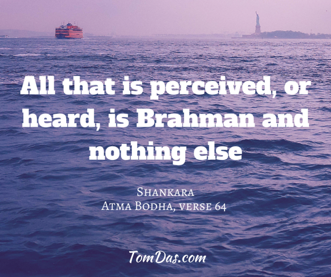 Shankara- All that is perceived is Brahman and nothing else