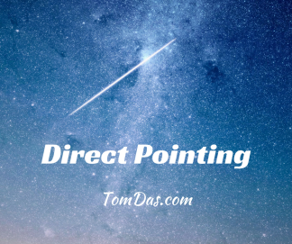 Direct Pointing