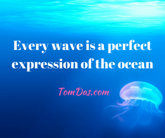 Every wave is a perfect expression of the ocean