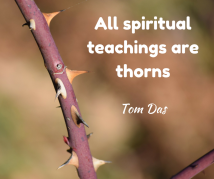 All spiritual teachings are thorns