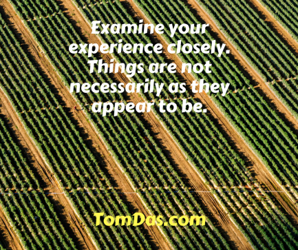 Examine your experience closely