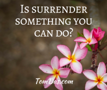 Is surrender something you can do