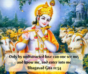Krishna Only by undistracted love