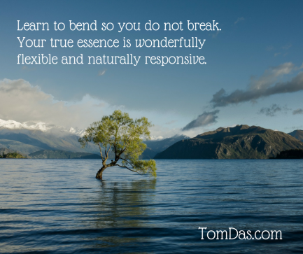 Learn to bend so you do not break