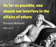 one should not interfere in the affairs of others