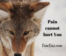 Pain cannot hurt You