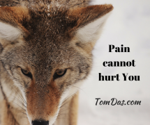 Pain cannot hurt You