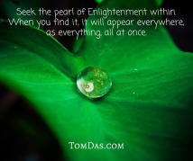 Seek the pearl of Enlightenment within