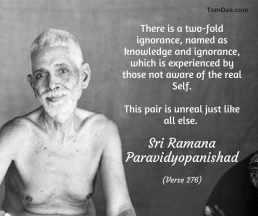 ramana knowledge is ignorance