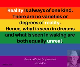ramana - no degrees of reality