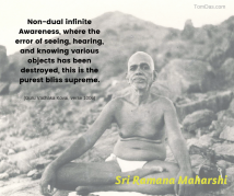 ramana the error of seeing, hearing, and knowing