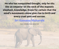 ramana thought gives rise to pain and sorrow
