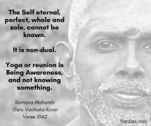 ramana yoga is being awareness, and not knowing something