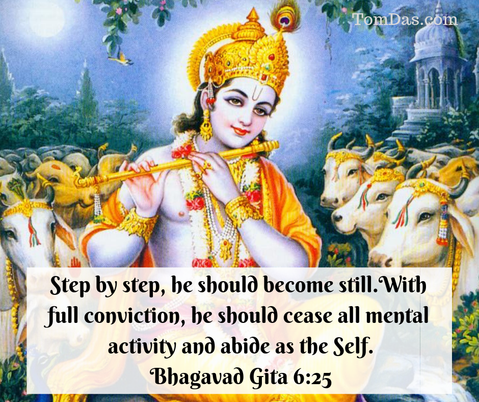 Gita step by step he should become still.png