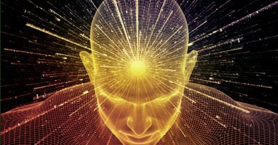 consciousness brain