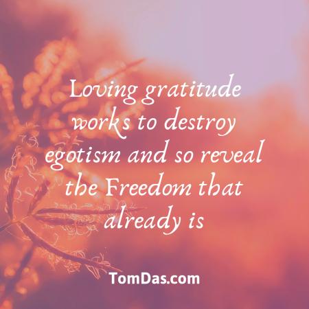 Loving gratitude leads to freedom