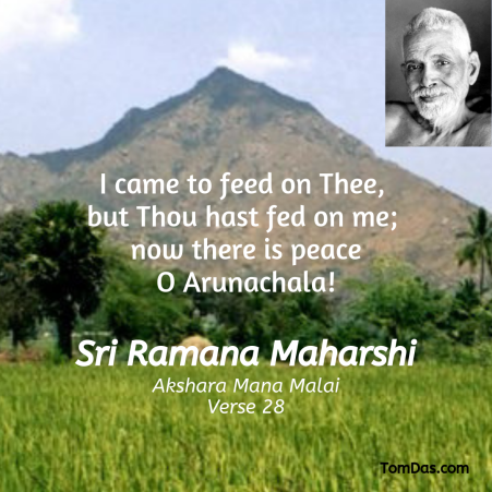 Ramana Thou hast fed on me