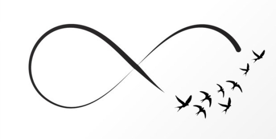 infinity birds swallows